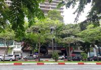 Bán nhà căn góc đường Nguyễn Cảnh Chân, Quận 1 DT 5,5 x 17m 6 tầng giá 39 tỷ, LH: 0901.888.086