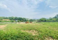 Cần bán 2.351m2 360m2 ONT view đẹp tại nhuận trạch Lương Sơn, Hòa Bình