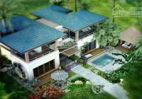 Hưng Thịnh mở bán nền biệt thự nghỉ dưỡng 1000m2 phía Đông Sài Gòn full thổ giá từ 14 triệu/m2