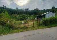 Bán lô đất mặt tiền đường B'Lao Xê Rê, Đại Lào - TP Bảo Lộc. Diện tích 1700m2 có 31m mặt tiền đường