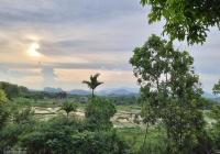 Cực phẩm mảnh đất view cánh đồng hướng mặt trời mọc gần nhiều homestay cao cấp