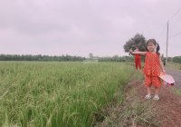 Bán đất sào giá rẻ cho anh chị mua đầu tư, xã Long Tân huyện Đất Đỏ BRVT