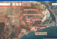 Lô đất cây lâu năm cách biển 1.5km, gần KDC quy hoạch của tập đoàn Rạng Đông cần bán gấp, 7321m2