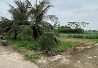 Chính chủ bán lô đất đầu ve 1516m2, giá rẻ tại xã Nga Tân huyện Nga Sơn Thanh Hóa 0985938187