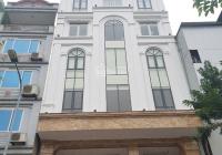 Mặt phố Nguyễn Thái Học vỉa hè đá bóng KD spa ngân hàng ô tô dừng đỗ 60m2 * 6T nhỉnh 25 tỷ
