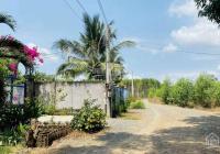 Bán 1187m2 đất nghỉ dưỡng cực hiếm tại Phước Hội, Đất Đỏ, BRVT. Bao tường thành vip siêu đẹp