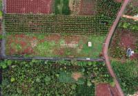 Cần bán gấp 5100m2 đất ở 3 mặt tiền đường, nằm ngay TT Hòa Hiệp, huyện Xuyên Mộc, LH 0901 497634