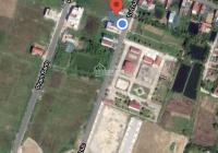 Bán gấp lô đất vàng 100m2 mặt đường Từ Thức - Nga Sơn - Thanh Hóa