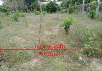 Cần bán gấp 2 lô 470m2 và 460m2 đất đường Bảo Đại, Triệu Phong, có thể phân lô