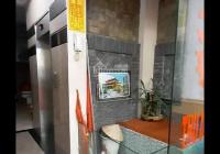 Bán nhà mặt phố Tôn Đức Thắng, Đống Đa, 8 tầng thang máy
