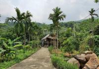 Lô đất 1728 m2 sẵn khuôn viên đẹp tại Thôn 9, Xã Ba Trại, Ba Vì, Hà Nội, LH Thu Hương 0975349726