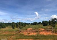 Đất nông nghiệp tại Bình Thuận liền kề cao tốc Phan Thiết - Dầu Giây giá chỉ 70ngàn/m2, sổ đỏ riêng