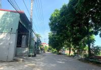 Cần bán 84,2m2 đất ở Đông Tảo Nam, Đông Tảo, Khoái Châu