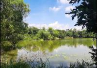 Bán 3000m2 đất nhà vườn tỉnh Hoà Bình, gần thị trấn tại Xã Đồng Tâm