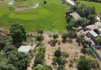 Chính chủ cần chuyển nhượng gấp 3634m2 đất nghỉ dưỡng tại Lương Sơn, Hòa Bình