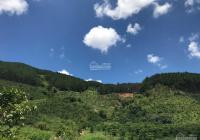 4000m2 lên thổ cư được sổ đầy đủ mặt đường bê tông 60m view suối LH 0989758796