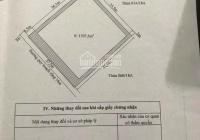 Chính chủ bán mảnh đất 1597.5m2 tại tuyến 2 mặt đường Lê Hồng Phong, Kiều Sơn ngay bên cạnh tòa án