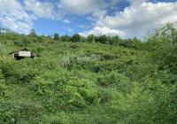 Bán gấp 2.7ha có thổ cư và đất rừng tại Lương Sơn đầu tư làm nghỉ dưỡng đỉnh giá chỉ nhỉnh 3 tỷ