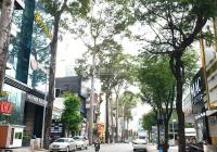 Bán nhà hẻm 8m Thạch Thị Thanh, DT 4.62x20m nở hậu 5.3m, giá 22 tỷ