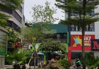 Mặt phố Phan Kế Bính - Ba Đình, phố ẩm thực, cafe Nhật, DT 90m2 x 6T, MT 7m, thang máy. Giá 34 tỷ