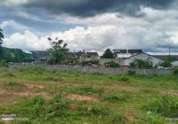 Bán đất biệt thự thổ cư 300m2 HC1 mặt tiền Nguyễn Trường Tộ, P. Ea Tam, Buôn Ma Thuột, Đắk Lắk