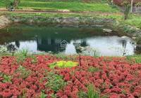 Đất nền trung tâm thành phố Bảo Lộc, sổ sẵn sang tên công chứng ngay