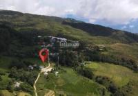 Bán mảnh đất 2800m2 tại Sapa2, view săn mây, ruộng bậc thang, giá chỉ từ 500 triệu