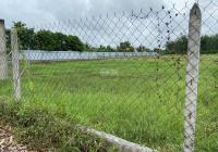 Đất vườn Củ Chi đường Ba Sa 502m2 giá rẻ 1tỷ176 SHR công chứng sang tên ngay