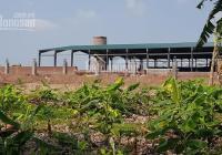 Bán nhanh 10 ha nhà máy gạch Tuynel tỉnh Hải Dương, giá rẻ hấp dẫn. LH: Mrs. Bình. 0916380367