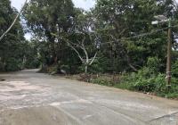 Bán 1ha đất Bãi Sao, Phú Quốc cách biển 1Km