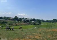Bán đất tuyệt phẩm view cánh đồng giá rẻ nhất trong tháng 9 tại Lương Sơn
