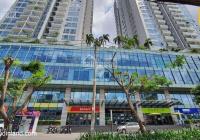 Chính chủ cần bán căn hộ chung cư Rivera Park Sài Gòn 74m2