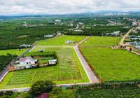 Bán lô đất (6*49,2m) - sổ sẵn - ngay ủy ban Lộc Phú - giá bán 1tỷ2 - liên hệ 0906626772