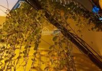 Bán nhà trung tâm Đống Đa, Thịnh Hào 2, lô góc 4 tầng giá 2,7 tỷ có thương lượng