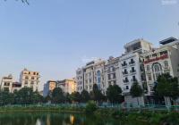 Bán 1 cặp biệt thự view hồ Đại Hoàng Long, TP Bắc Ninh