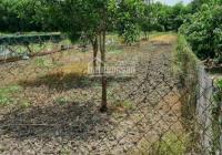 Chính chủ cần bán miếng đất 2550m2, Bình Lợi, Bình Chánh, giá 2,6 triệu/m2, sổ riêng