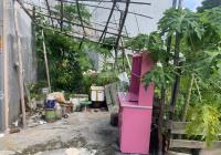 Bán đất Cam Lộ, Hùng Vương, Hồng Bàng giá đầu tư. LH 0334842684