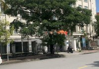 Bán đất biệt thự Phúc Lộc giá rẻ nhất thị trường - đối diện TTHC Quận Hải An