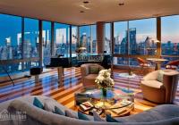 Bán Sky Villas Penthouse Landmark 81 tầng cao nhất, DT siêu lớn 397 m2. Hỗ trợ 15 tháng 70%