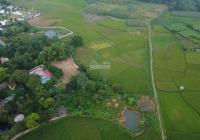 Cần bán 2500m2 tại Cư Yên, Lương Sơn, hòa Bình