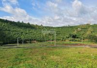 Đất mặt tiền đường nhựa 8.5m diện tích 97m2, giá 700 triệu