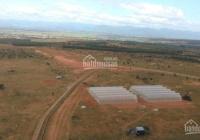 Bán đất Bình Thuận 13748m2 sổ đỏ, đường liên huyện cạnh nông trại hiện hữu đang canh tác