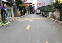 Cần bán gấp 95m2 đất mặt phố Hoa Lâm, Việt Hưng, kinh doanh đỉnh cao