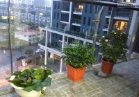 Chính chủ gửi bán căn hộ 105m2, 3PN + 2WC, tòa T1 chung cư TSQ - Euroland, giá 2.45 tỷ