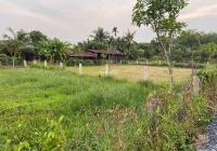 Đất vườn Củ Chi 2 lô liền kề 1000m2, giá rẻ 2tỷ3 ngang 28m, cực đẹp, SHR