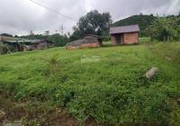 Đất sào có thổ cư mặt tiền đường nhựa bằng như chiếu trải khu vực Đại Lào