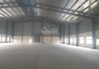 Nhà xưởng cho thuê tại khu công nghiệp Bình Dương (Phú Tân)