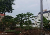 Bán lô biệt thự giá rẻ nhất khu vực KBT Đỉnh Long, TP. Hải Dương, 0925 954 888