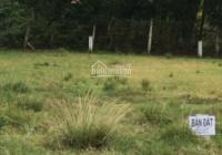 Bán đất mặt tiền đường Số 51, SHR chính chủ, XD tự do, KDC hiện hữu. LH 0909919379
