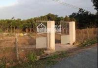 Chính chủ bán đất khu dân cư Xã Hòa Bình, Huyện Xuyên Mộc